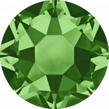Fern Green HF SS20