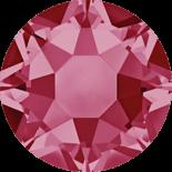 Indian Pink HF SS16