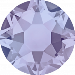 Provence Lavender HF SS20