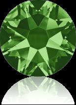 Fern Green F ss9